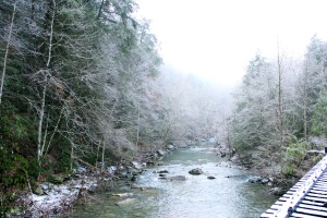clear-creek-at-pine-mountain